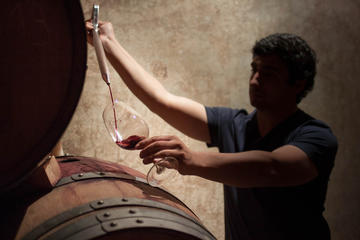 Boutique Winery Tours and Tastings...