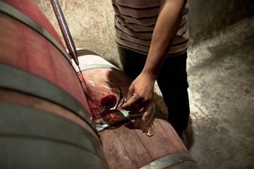 Degustação de vinho em Mendoza o dia inteiro
