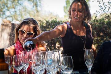 Degustação de vinho em Mendoza o dia...