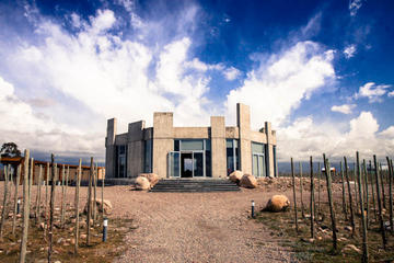 Hidden Wineries of the Uco Valley
