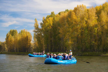 Day Trip 21-Mile Combo: Snake River-Scenic and Whitewater Trip near Jackson, Wyoming