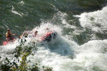 Intermediate Snake River White-Water Rafting