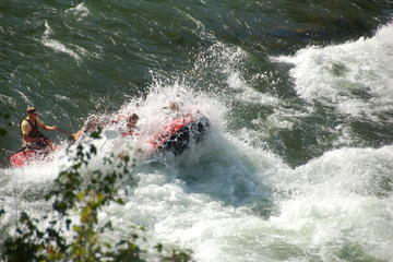 Snake River White-Water Rafting Small-Group Tour