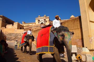 08 DAYS CULTURAL INDIA TOUR