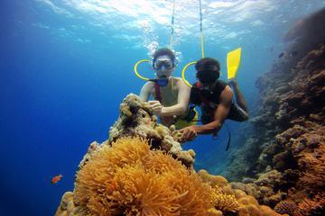 Bangaram Island Holiday