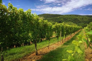 Day Trip Weekday Virginia Private Custom Wine Tour from Charlottesville near Charlottesville, Virginia