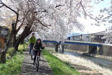 Morning Cycling Tour in Hida-Furukawa