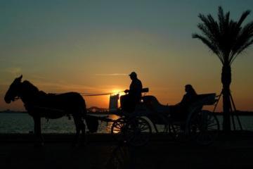 Erkunden Sie die Stadt Luxor mit einer Pferdekutsche
