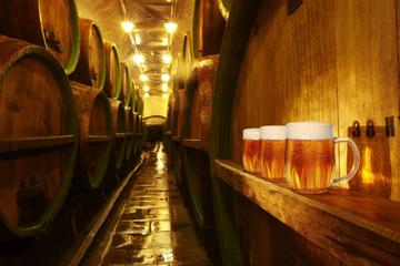 Private Tour to Pilsner Urquell...