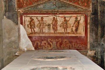 Excursion privée d'une demi-journée à Pompéi