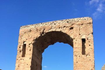 Tour privato: Gita di un giorno con escursione a Ercolano, al Vesuvio