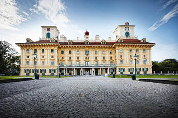 Haydn-Ticket im Schloss Esterhazy