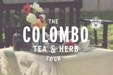 Private Day Tour: Colombo Tea and Herb Tour