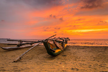 Private Day Tour: Negombo City Tour ...
