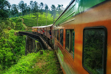 Private Day Trip: Nuwara Eliya from Kandy by Train