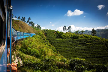 Private Day Trip: Nuwara Eliya from...