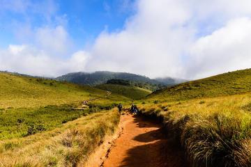 Private Guided Hike to Kirigalpoththa...