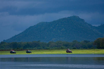 Private Tour: Udawalawe National Park Safari