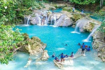 White River Rafting and Dunn's River or Blue Hole Tour