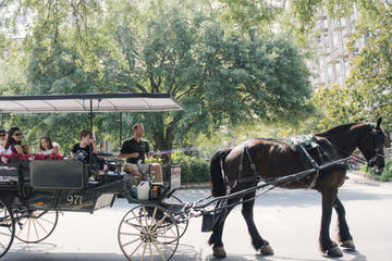 Horse and Carriage Tour of Historic Savannah