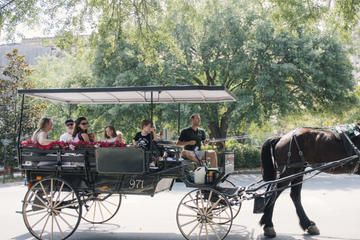 Savannah Horse & Carriage and History and Architecture Walking Tour...
