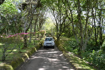 8-Hour Private Tour in 4x4 Vehicle...