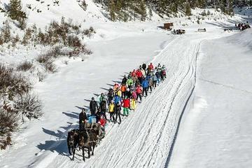 Hidden Valley Ski Tour