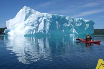 Trinity Tow 'N' Go Kayak Tour