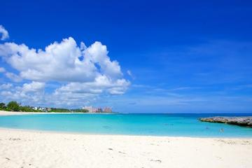 Private Half-Day Sighseeing and Beach Charter in Nassau