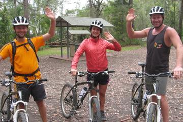 Minyon Falls: Mountain-Bike-Tour mit Übernachtung und Aufstieg zum...