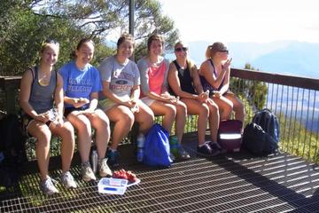 Mount Warning Day Trip from Byron Bay...