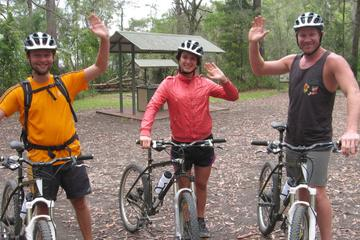 Overnight Minyon Falls Mountain Bike Tour and Mount Warning Sunrise...