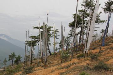 Kuenselphodrang day hike