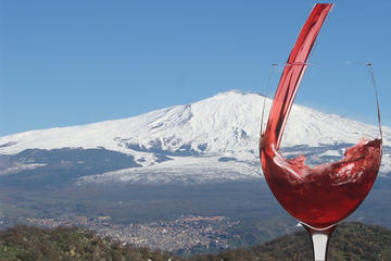 Etna Wine Tour Including Lunch from Catania