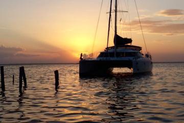 Crucero privado de noche en catamarán en Cancún e Isla Mujeres