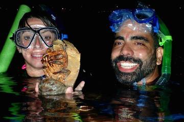 Private Shoreline Night Snorkel in Maui