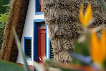 Excursão à parte leste da Ilha da Madeira com caminhada em levada e...