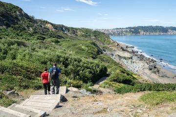 3-Hour Bridge to Beach Private Hike in San Francisco