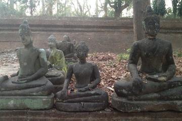 Visite privée: Wat Phra that Doi Suthep et ville de Chiang Mai