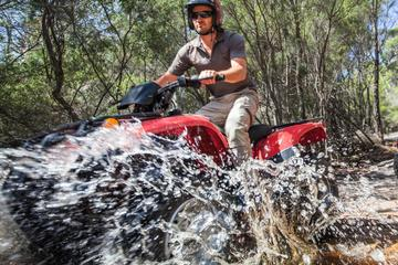 Quad Bike 2-Hour Adventure: Freycinet National Park