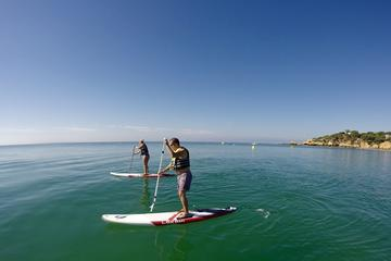 Bike tour and SUP - Stand Up Paddle