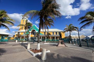 Excursion en bord de mer à Nassau: visite des points forts de l'île