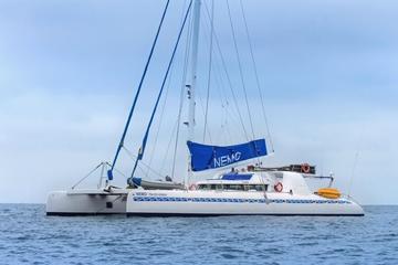 4-tägige Galapagos-Bootstour mit...