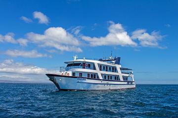 Crucero por las Islas Galápagos: 5 días desde San Cristobal a bordo...