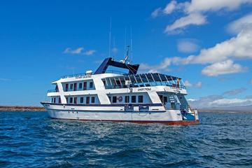 Galapagos Cruise: 4-Day Tour to Santa...