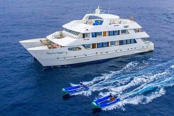 Galapagos Islands Cruise: 5-Day Catamaran Sail Aboard the 'Catamaran Treasure of Galapagos'