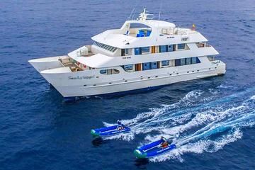 Galapagos Islands Cruise: 7-Days Catamaran Sail Aboard the 'Catamaran Treasure of Galapagos'