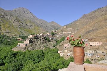Privat-Tagesausflug Hoher Atlas ab Marrakesch, Wanderung oder Eselritt