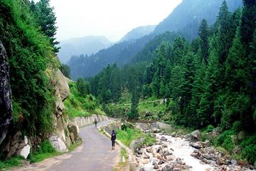 6-Night Private Himachal Pradesh Tour from New Delhi