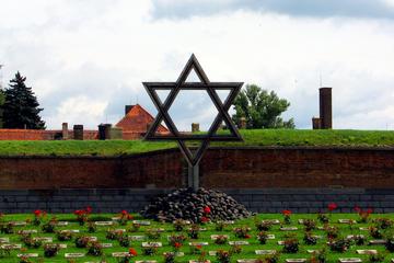 Recorrido de medio día desde Praga al memorial de Terezín
